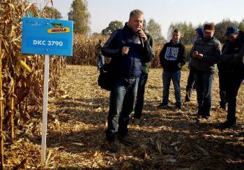 monsanto, dekalb, agro-ters, kukurydza
